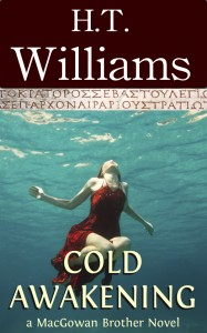 Cold Awakening - a MacGowan Brothers Novel